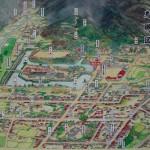 コラム 亀井玆矩と鹿野城