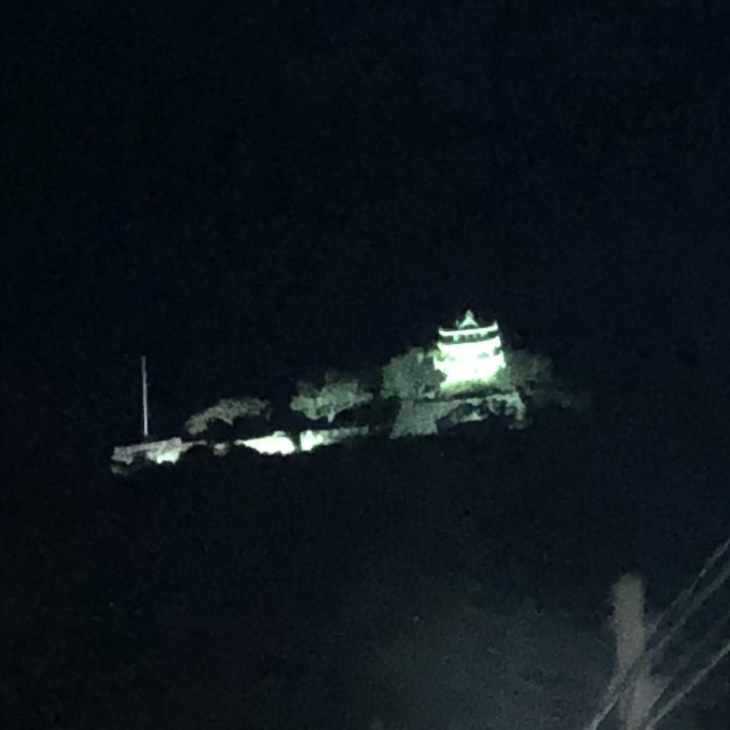洲本城ライトアップ